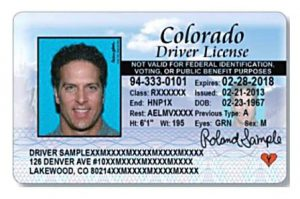 Cancellation of Driver's License Renewal – Nike Insights